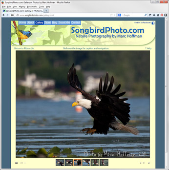 The SongbirdPhoto.com Gallery page. Click to go there.